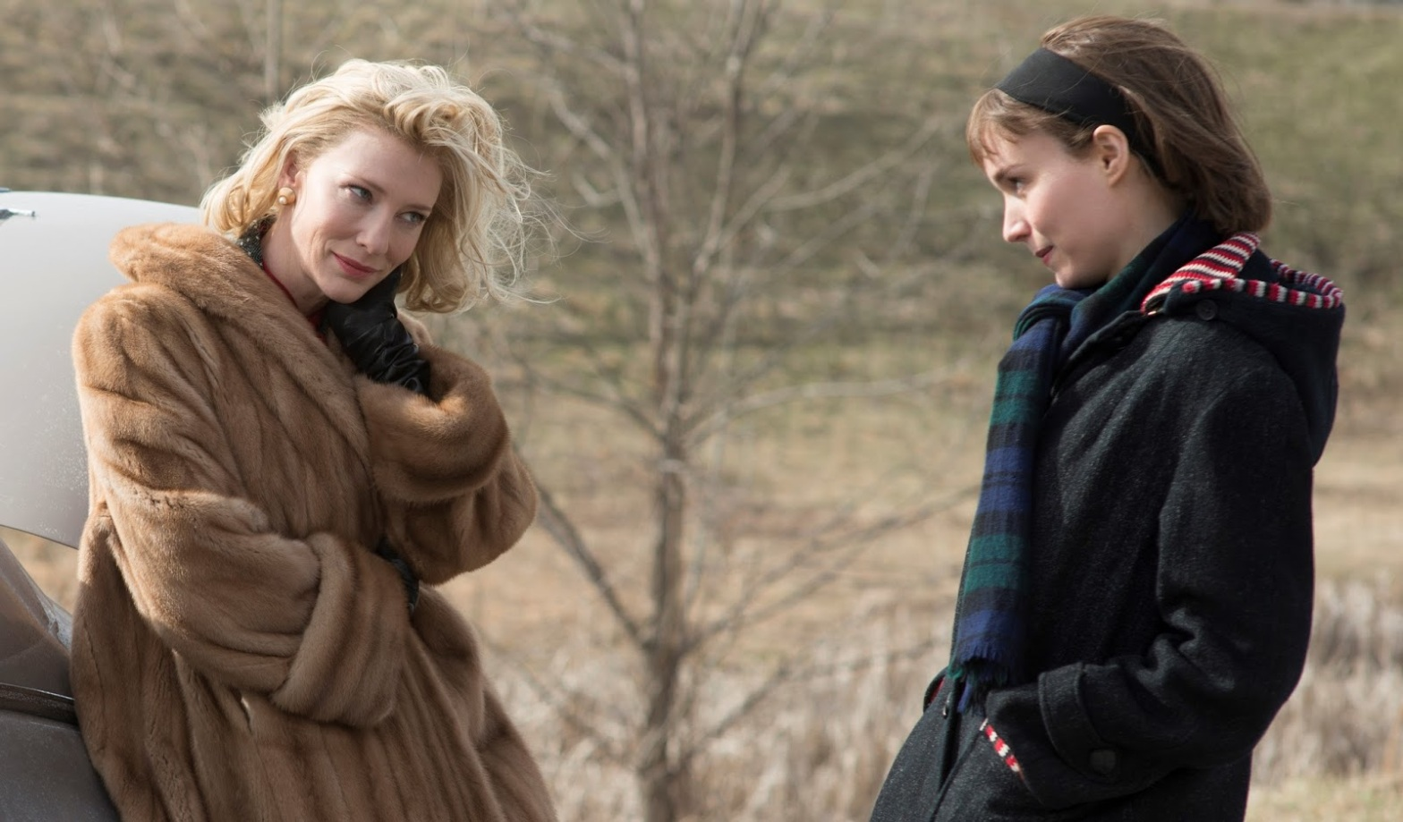 Carol Cate Blanchett and Rooney Mara