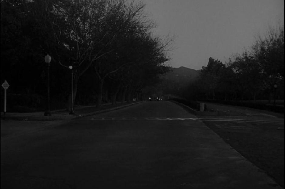 Viale del tramonto