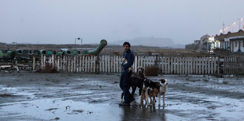 Dogman Cannes 71